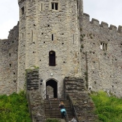 Lost 8GB SD memory card- Cardiff Castle